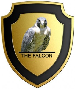 The Falcon - Art Of Defense